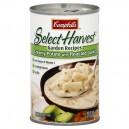 Campbell's Select Harvest Soup Creamy Potato with Roasted Garlic