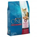 Purina ONE Special Care Dry Cat Food Urinary Tract Health Formula