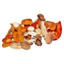 Mushrooms Chanterelle