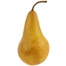 Pears Bosc Organic
