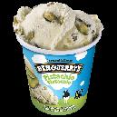 Ben & Jerry's Ice Cream Pistachio Pistachio