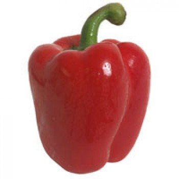 Peppers Bell Red Organic