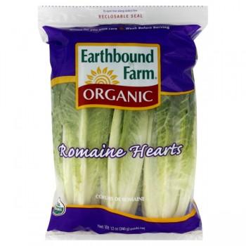 Lettuce Romaine Hearts Organic