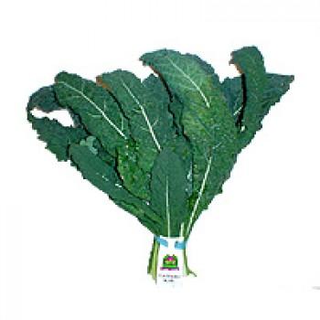 Greens Kale Tuscan Organic