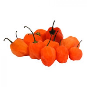 Peppers Habanero - 9 ct