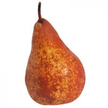 Pears Bosc
