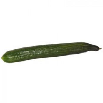 Cucumbers English Hot House