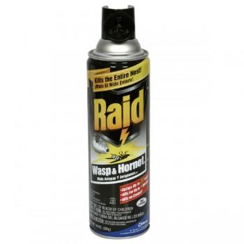 Raid Wasp & Hornet Killer Aerosol