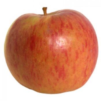 Apples Fuji Organic