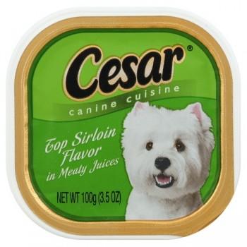Cesar Original Pate Wet Dog Food Top Sirloin