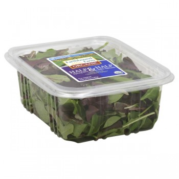 Salad Earthbound Farm Half Spring Mix & Half Baby Spinach Organic