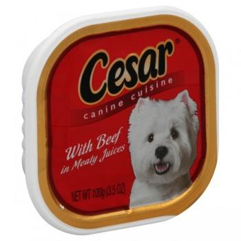 Cesar Original Pate Wet Dog Food Beef