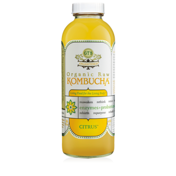 GT'S Enlightened Citrus Kombucha Drink Raw Organic